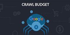 بودجه خزش  crawl budget چیست؟-طراحی سایت