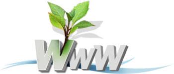 بررسی تفاوت طراحی وب سایت با PHP و طراحی سایت با Asp.net